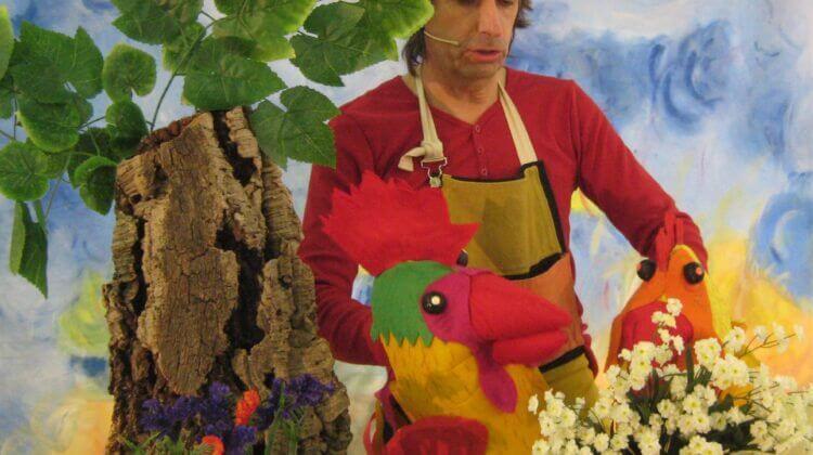 El gall de pengim-penjam.com